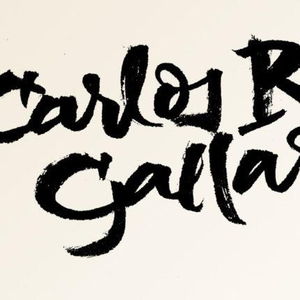 Carlos Ruiz Gallardo