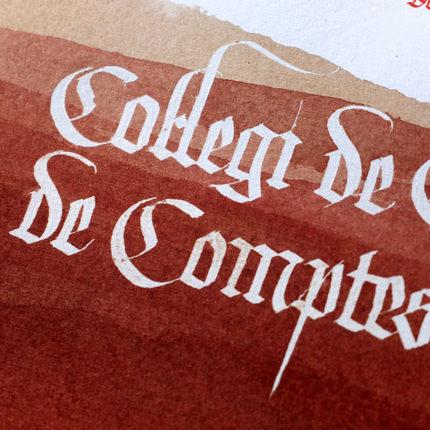 Diploma Col·legi Censors de Comptes