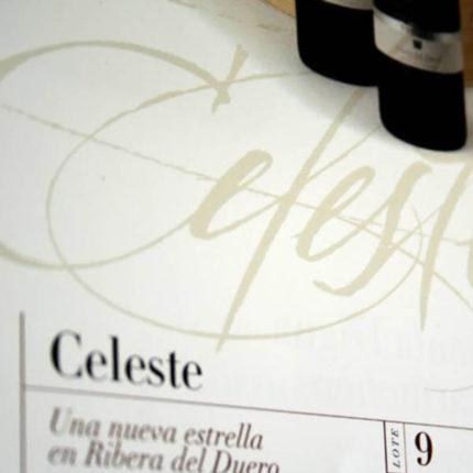 Torres Christmas catalog